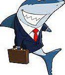 Shark-briefcase