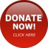 donate-button-th