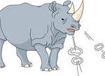 Angry Rhinoceros